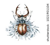 watercolor beetle with horns on ... | Shutterstock . vector #1021901104