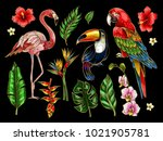 parrot  toucan  flamingo and... | Shutterstock .eps vector #1021905781