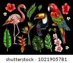 parrot  toucan  flamingo and... | Shutterstock .eps vector #1021905781