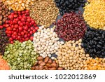 multicolor dried legumes for...   Shutterstock . vector #1022012869