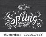 hello spring. hand drawn... | Shutterstock .eps vector #1022017885