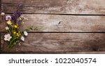 wild flowers on old grunge... | Shutterstock . vector #1022040574