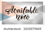 black hand sketched vector text ... | Shutterstock .eps vector #1022075605