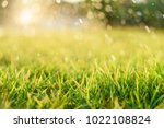 nature background with drops of ... | Shutterstock . vector #1022108824
