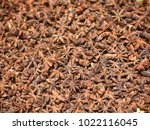 seeds  spices  background ... | Shutterstock . vector #1022116045