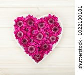 garden flowers in heart shape... | Shutterstock . vector #1022130181