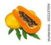 papaya fruits isolated on white ...   Shutterstock . vector #1022137054