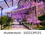 kyoto  japan   13 april 2017 ... | Shutterstock . vector #1022139151