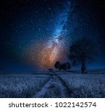 milky way and field with trees... | Shutterstock . vector #1022142574