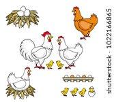 set of rooster  hen  baby... | Shutterstock .eps vector #1022166865