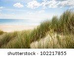 Sunny Beach With Sand Dunes An...