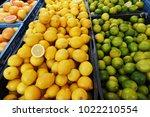 Fresh Citrus Fruits At Farm...