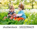 two little boy friends in... | Shutterstock . vector #1022250625