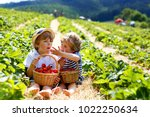 two little sibling boys on... | Shutterstock . vector #1022250634