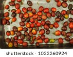 raw coffee beans  | Shutterstock . vector #1022260924