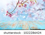 top of wood table empty ready... | Shutterstock . vector #1022286424