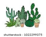 cactus and succulent vector... | Shutterstock .eps vector #1022299375