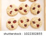 oat and cranberries cookies.... | Shutterstock . vector #1022302855