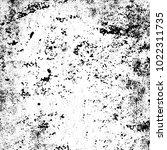 black and white grunge... | Shutterstock .eps vector #1022311735