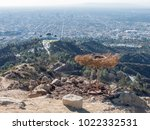 aerial view of griffith... | Shutterstock . vector #1022332531