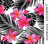 tropical coral flowers and...   Shutterstock .eps vector #1022385877