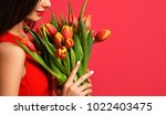 Small photo of Beautiful woman with bouquet of tulip flowers in red dress. Closeup spring composition on pink background