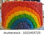 vibrant rainbow cake   Shutterstock . vector #1022405725