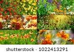 set panoramic photos variety... | Shutterstock . vector #1022413291