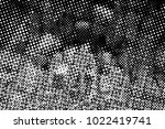 grunge black and white circles... | Shutterstock . vector #1022419741