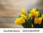 a bouquet of yellow tulips in a ... | Shutterstock . vector #1022463949