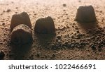 truffle candies and cocoa... | Shutterstock . vector #1022466691