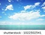 sea and blue sky in summer.... | Shutterstock . vector #1022502541