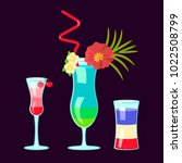 set of exotic alcoholic... | Shutterstock .eps vector #1022508799