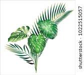 realistic detailed vector...   Shutterstock .eps vector #1022515057