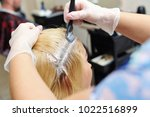 Small photo of The hairdresser uses a brush to apply the dye to the hair, for dyeing