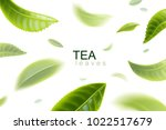 green tea. tea leaves whirl in... | Shutterstock .eps vector #1022517679