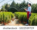 senior woman gardener or seller ...   Shutterstock . vector #1022539729