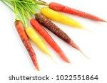 Colorful Rainbow Carrots On...