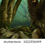 old mossy oak trees and stones... | Shutterstock . vector #1022556349