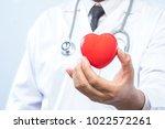 professional medical doctor... | Shutterstock . vector #1022572261