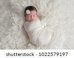 sleeping  ten day old newborn... | Shutterstock . vector #1022579197