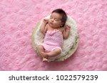 portrait of a sleeping  one...   Shutterstock . vector #1022579239
