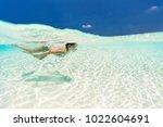 split underwater photo of a... | Shutterstock . vector #1022604691