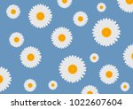 flowers of white daisy on a... | Shutterstock . vector #1022607604