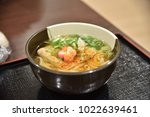 very delicious japanese udon | Shutterstock . vector #1022639461