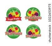 fresh fruits logo design vector ... | Shutterstock .eps vector #1022653975