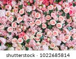 Stock photo natural sweet pink roses wedding wall backdrop decoration valentine s day flower 1022685814