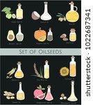 illustration of different kinds ...   Shutterstock . vector #1022687341