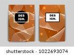 light orange vector brochure...