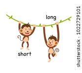 opposite short and long vector... | Shutterstock .eps vector #1022729101